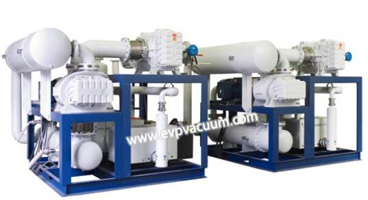 Vacuum system for secondary degassing process of molten steel