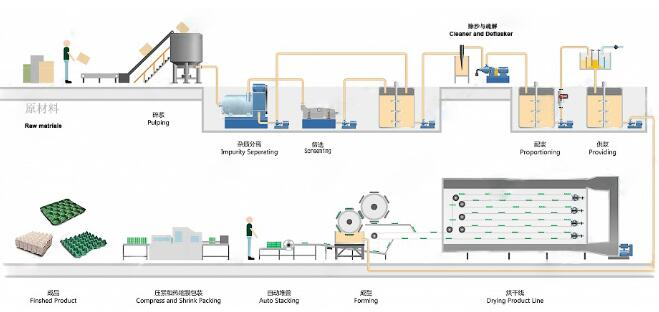 The following is the technological process of egg box