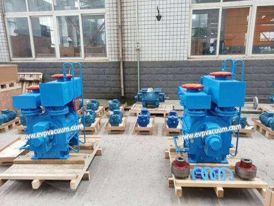 Help you to know the liquid ring vacuum pump rubber ball