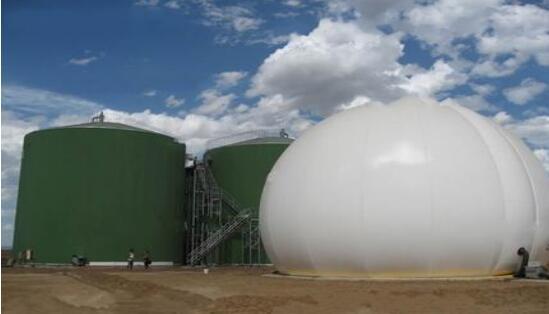 biogas circulation
