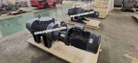 Roots vacuum pumps