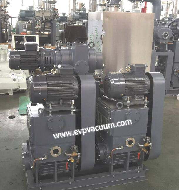 Roots - Piston Vacuum Pump Package Used In Fruit freeze dryer